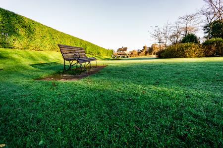Lone Bench on the Grass Stok Fotoğraf