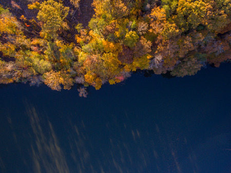 Aerial View of Fall Leaves and Colors around a Lake