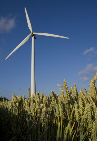 Wind turbines with a clear blue sky Stock Photo - 5569059