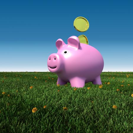 piggybank: piggybank on a meadow with blue sky background - finance saving concept Stock Photo