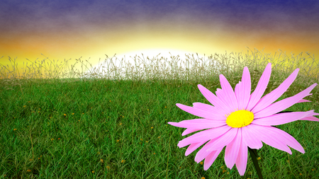 early in the evening: Spring background with early evening sky - 3D render