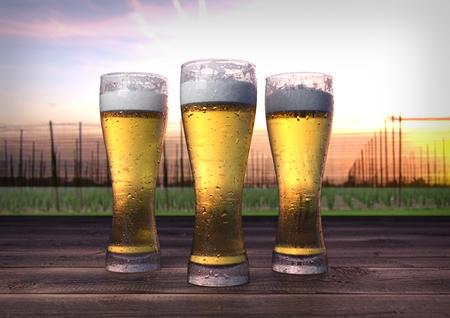 hopgarden: three glasses of beer on wooden desk with hop-garden on background- 3D render
