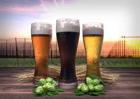 hopgarden: three kinds of beer with barley and hops on wooden desk with hop-garden on background - 3D render