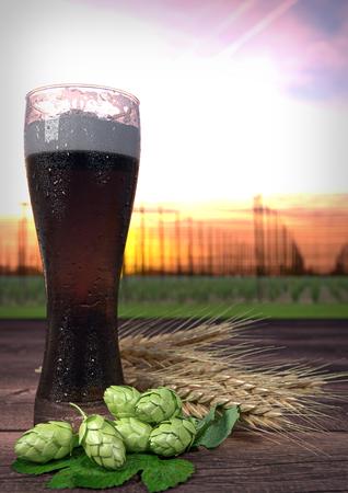 hopgarden: dark beer with hop-garden on background. 3D render