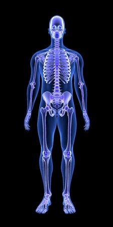Niebieskie Ciało Człowieka Anatomii i Szkielet 3D Skanowanie renderowania na czarnym tle