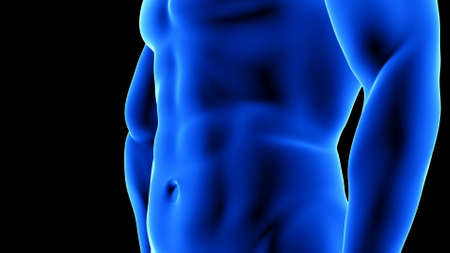 male fitness body transformation - after, abdominal muscles detail - muscle mass building animation on black background
