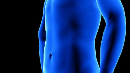 male fitness body transformation - before, abdominal muscles detail - muscle mass building animation on black background
