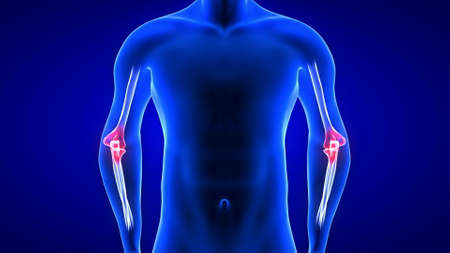 Elbow Pain illustration front view close-up. Blue Human Anatomy Body 3D Scan render on blue background