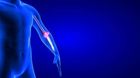 Elbow Pain close-up illustration. Blue Human Anatomy Body 3D Scan render on blue background