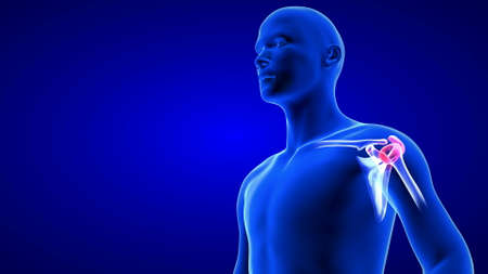 Shoulders Pain close-up illustration. Blue Human Anatomy Body 3D Scan render on blue background