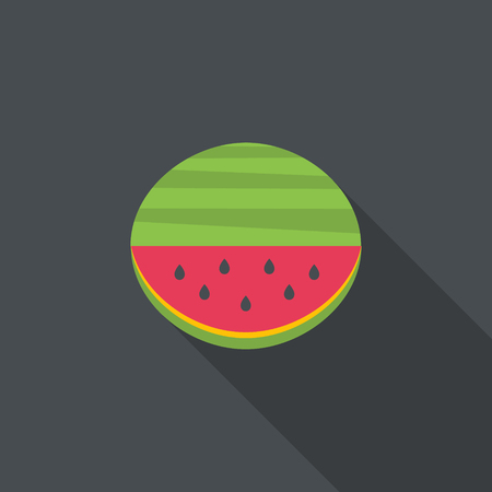 Big flat watermelon with seed. Vector illustration.