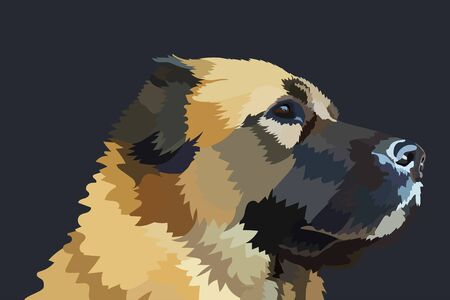 Portrait of a Caucasian Shepherd dog breed. eps10 vector stock illustration.