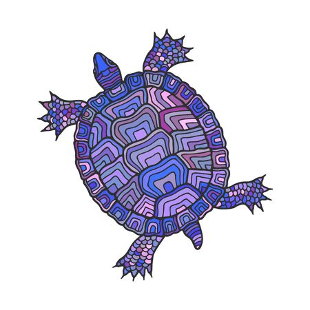 Turtle is decorative. Vector stock illustration eps 10. Hand drawing