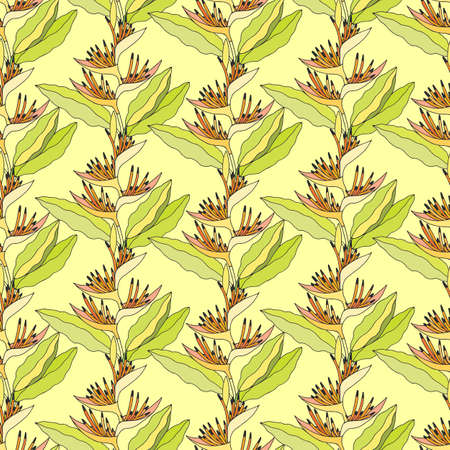 Seamless pattern of Heliconium plant. EPS10 vector illustration. Hand drawing.