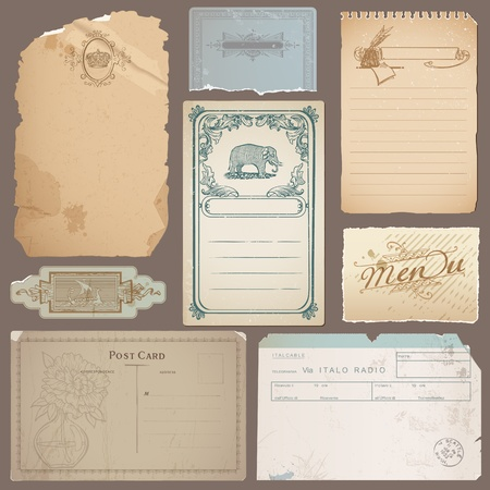 torn cardboard: Set of Different Vintage Papers, Cards and Old Notes in vector Illustration