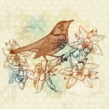 postcard design: Vintage Spring Card with Bird and Flowers - hand drawn in vector Illustration