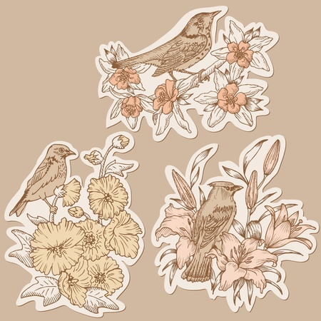 Set of Vintage Birds and Flowers on tags - hand drawn in vector Vector