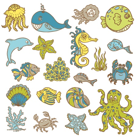algae: Marine life doodles - Hand drawn collection in vector Illustration
