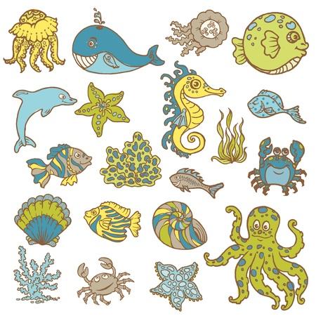 algae cartoon: Marine life doodles - Hand drawn collection in vector Illustration