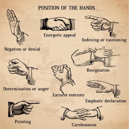 partes del cuerpo humano: Juego de manos de �poca - Various Positions en el vector - Alta Calidad