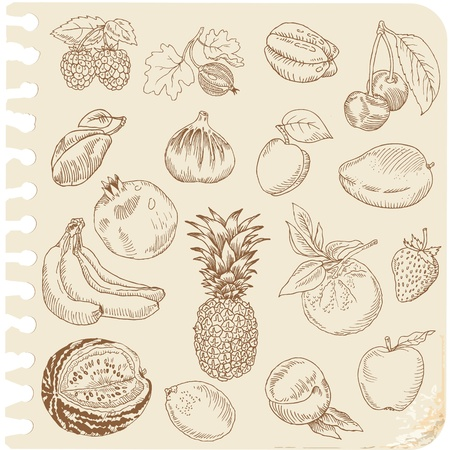 복숭아: 낙서 과일 세트 - 벡터에 손으로 그린 - 스크랩북 디자인을위한 일러스트