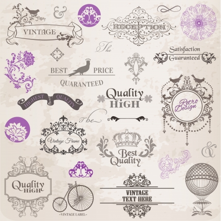 vintage document: Vector Set  Calligraphic Design Elements and Page Decoration, Vintage Frame collection with Flowers