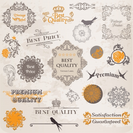 Calligraphic Design Elements and Page Decoration, Vintage Label collection with Flowers Vector
