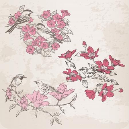 duif tekening: Retro Illustraties - Bloemen en Vogels - voor het ontwerp en scrapbook Stock Illustratie