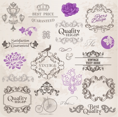 Calligraphic Design Elements and Page Decoration, Vintage Frame collection with Flowers Stock Vector - 14047862