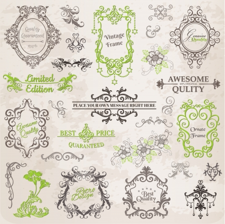 Calligraphic Design Elements and Page Decoration, Vintage Frame collection with Flowers Illustration