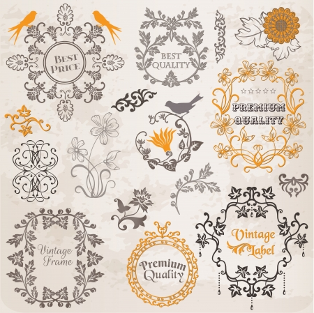 vintage style: Calligraphic Design Elements and Page Decoration, Vintage Frame collection with Flowers Illustration