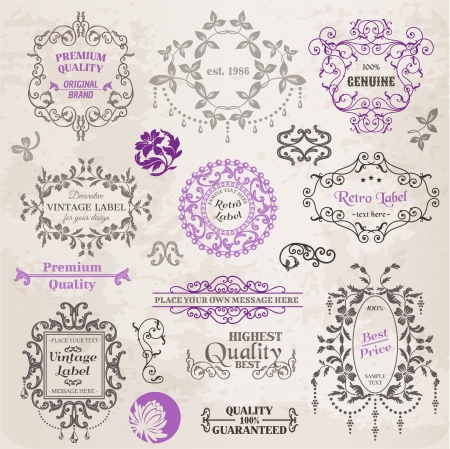 calligraphic design: Calligraphic Design Elements and Page Decoration, Vintage Frame collection with Flowers Illustration