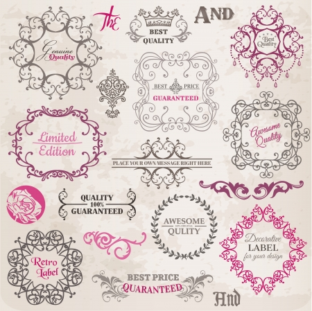 with sets of elements: Calligraphic Design Elements and Page Decoration, Vintage Frame collection with Flowers Illustration