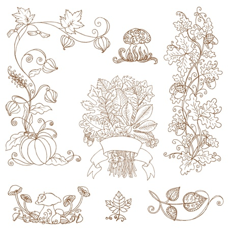 stylize: set of decorative Autumn branches - for scrapbook and design  Illustration