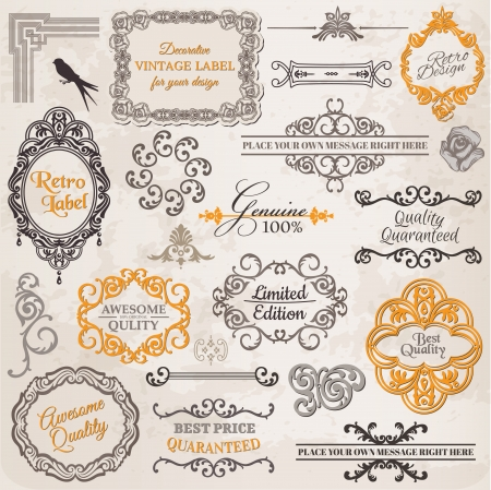 calligraphic design: Set: Calligraphic Design Elements and Page Decoration, Vintage Frame collection with Flowers