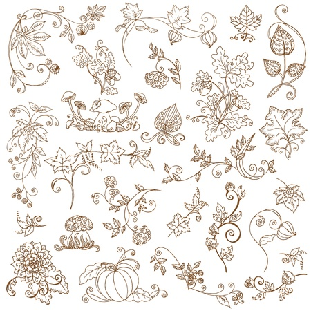 pumpkin border:  set of decorative Autumn branches, leaves - for scrapbook and design in