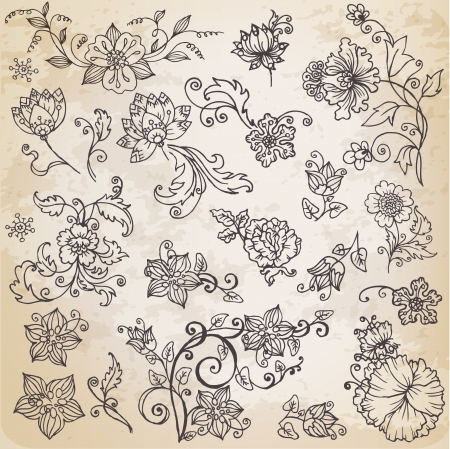 old paper texture: Beautiful floral elements - hand drawn retro flowers, leafs and ornaments