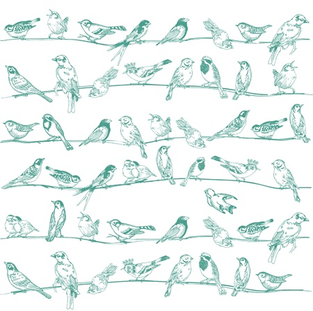 postcard vintage: Birds Seamless Background - for design and scrapbook