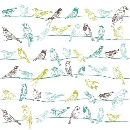 �rboles con pajaros: Aves sin fisuras de fondo - para el dise�o y libro de recuerdos - en vector
