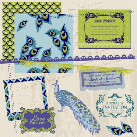 Scrapbook Design Elements - Vintage Peacock Feathers - in vector Vector