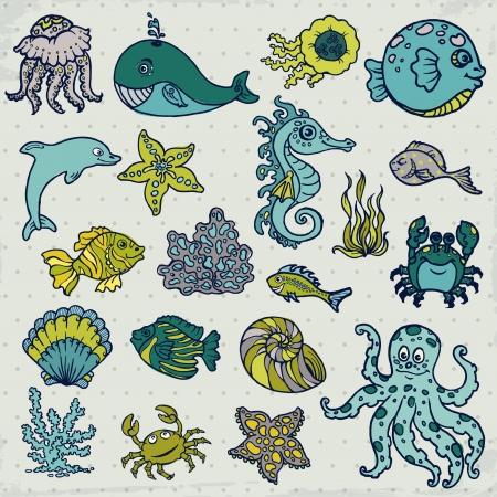 algae cartoon: Summer Sea Life creatures - star, fish, shell, crab - for design and scrapbook in vector Illustration