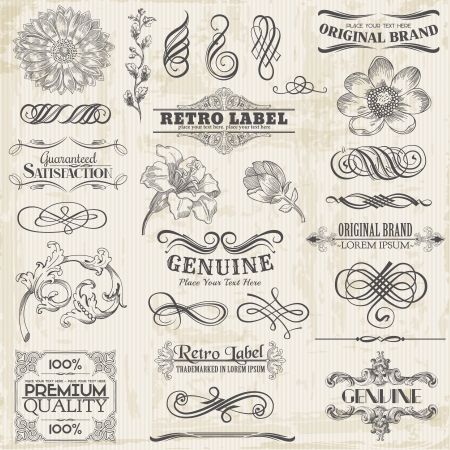 typography: Calligraphic Design Elements and Page Decoration, Vintage Frame collection with Flowers Illustration
