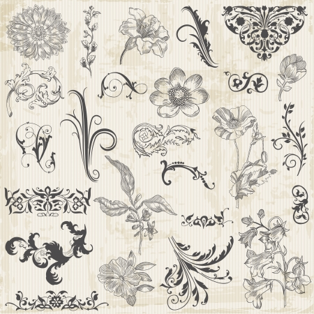 calligraphic design: Vector Set: Calligraphic Flower Design Elements and Page Decoration