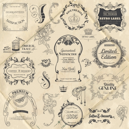 tipografia: Vector Set: Elementos caligr�ficos del dise�o y decoraci�n de la p�gina, colecci�n Frame Vintage con flores