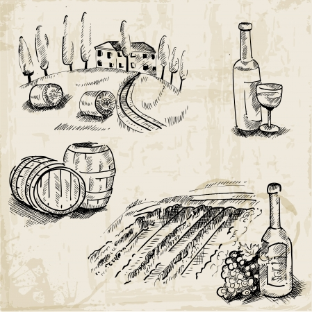 winemaking: Wine, Winemaking and Vineyard - hand drawn illustration - in vector Illustration