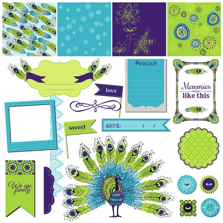 Scrapbook Design Element - Peacock Theme  Vector