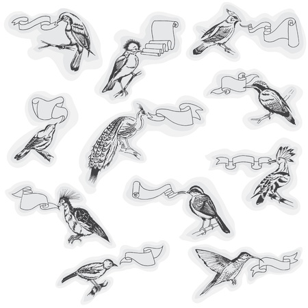 Hand drawn Birds with Signs - for design and scrapbook  Vector