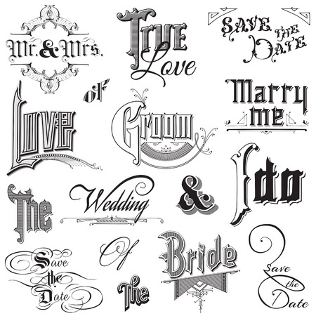 bride and groom illustration: Calligraphic Wedding Elements - for design and scrapbook - in vector