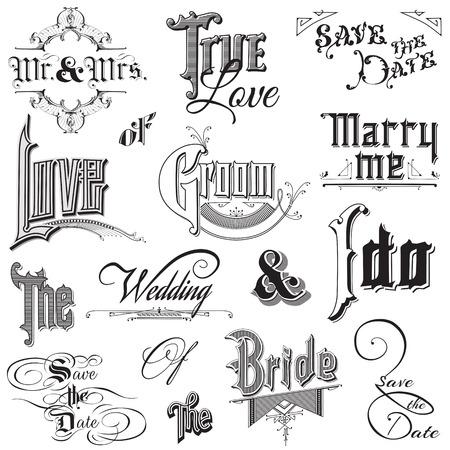 tarjeta postal: Elementos caligráficos boda - para el diseño y libro de recuerdos - en el vector Vectores