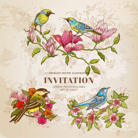dessin fleur: Ensemble de fleurs et d'oiseaux de cru - Illustration tir�e par la main Illustration